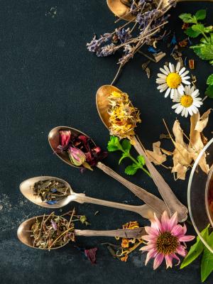 Herbaclass termékek